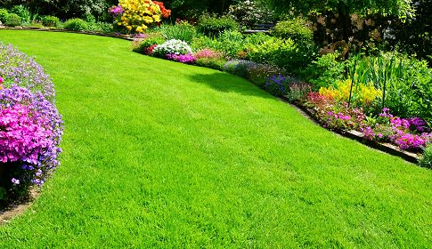 beautiful garden with perfect lawn